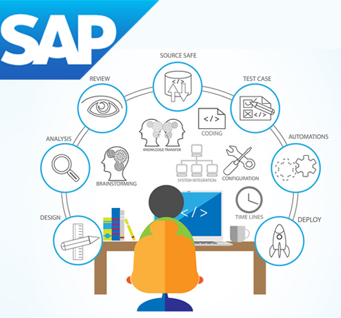 sap-custom-developments1
